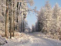 зима дороги Стоковое Фото