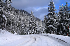 зима 2 дорог Стоковые Изображения