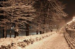 зима Стоковое Фото