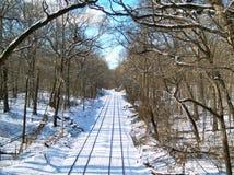зима 6 nyc Стоковая Фотография