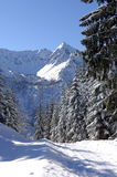 зима alps Стоковое Изображение