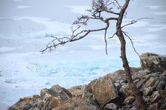 зима baikal стоковые фотографии rf