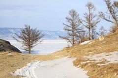 зима baikal Стоковые Изображения