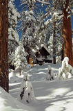 Зима Cabiin Стоковое фото RF