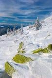 зима carpathians Стоковое фото RF