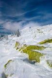 зима carpathians Стоковые Изображения RF