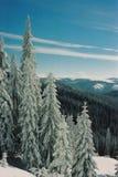 зима carpathians Стоковое Изображение RF
