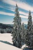 зима carpathians Стоковое Изображение