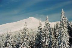 зима carpathians Стоковые Фотографии RF