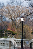 зима Central Park моста смычка Стоковые Фото