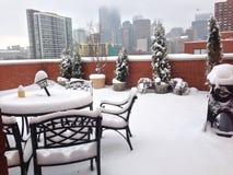 зима chicago Стоковое Изображение RF