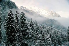 зима dombai Стоковое Изображение RF