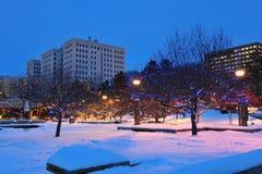 зима edmonton Стоковые Фото