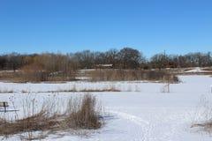 Зима field стоковые изображения