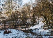 Зима Forrest Sceen с мостом полесья Стоковая Фотография RF