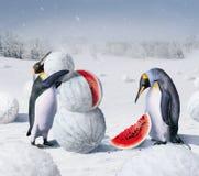 Зима Kherson Стоковая Фотография RF