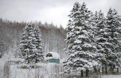 зима lodge дачи стоковое фото