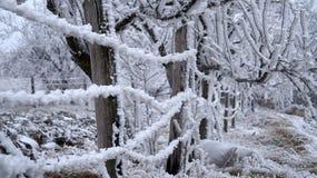 Зима Sabanta Стоковые Изображения RF