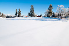зима scape стоковые изображения