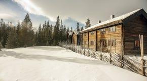 Зима Scape стоковое фото rf