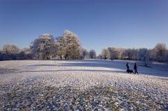 зима snowscene Стоковые Фото