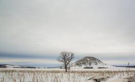 Зима Toratau Стоковое Изображение