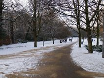 зима vondel парка стоковые изображения rf