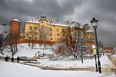 зима wawel Стоковое Фото