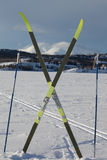 зима x спорта лыжи страны принципиальной схемы Стоковые Изображения RF