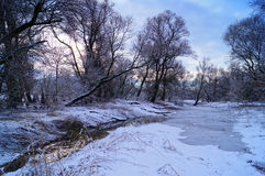 Зимнее время в одичалой природе стоковые изображения rf