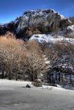 зимнее пущи гористое Стоковые Изображения RF