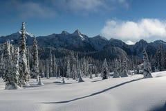 Зимние горы Tatoosh с снегом покрыли деревья и длинные тени Стоковое Изображение RF