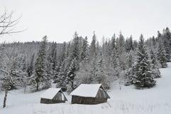 Зимние отдыхи в Zakopane Стоковые Фото