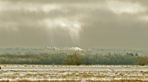 Зимний день Стоковые Фотографии RF