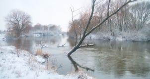 Зимний отдых стоковое изображение rf