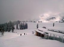 зимы Стоковые Фотографии RF