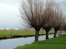 Зим-небо над De Zaanse Schans в Голландии Стоковая Фотография RF