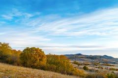 Злаковики осени Внутренней Монголии стоковые фотографии rf