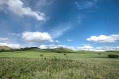 Злаковики Wulan Butong, Chifeng, Внутренняя Монголия стоковое изображение