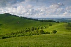 злаковик Иннер Монголиа фарфора Стоковое Изображение RF