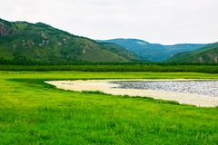 Злаковик и озеро Стоковая Фотография