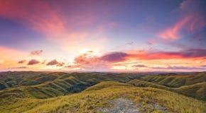 Злаковик на предпосылке неба захода солнца Индонезия стоковые фото