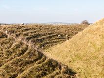 злаковик a природы ландшафта крепости девичьего утюга замка исконный стоковые изображения rf