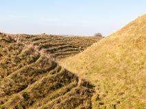 злаковик a природы ландшафта крепости девичьего утюга замка исконный стоковое фото