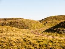 злаковик a природы ландшафта крепости девичьего утюга замка исконный стоковое фото rf