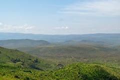 Злаковик саванны на держателе оле Sekut в горной цепи Oloroka, Восточно-африканской зоне разломов, Кении Стоковые Изображения RF