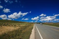 Злаковик Ruoergai, Xiahe, Gannan, Китай стоковые изображения