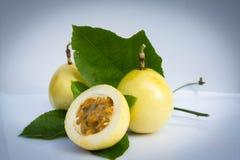 Зловонный passionflower, passionflower Scarletfruit, s Стоковая Фотография