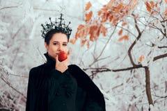 Злой ферзь с отравленным Яблоком в стране чудес зимы стоковые фотографии rf