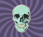 Злой череп Стоковое Изображение RF